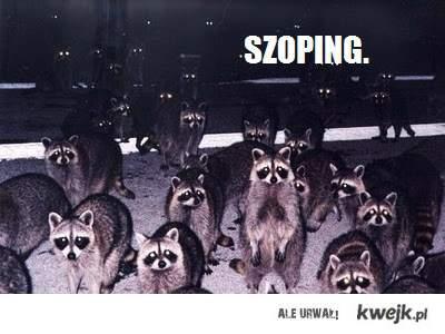 SZOPING