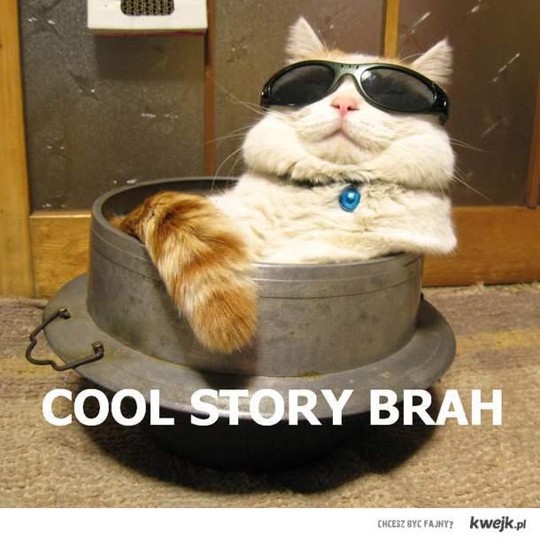 cool story brah