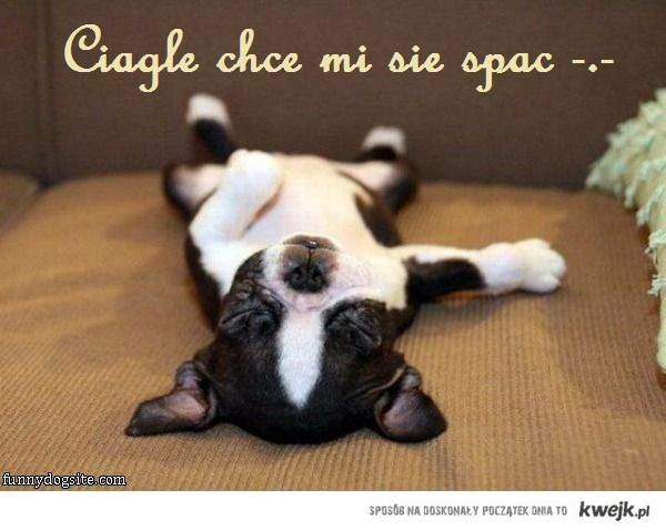 Spać!