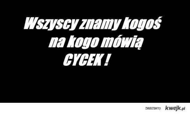 Cycek