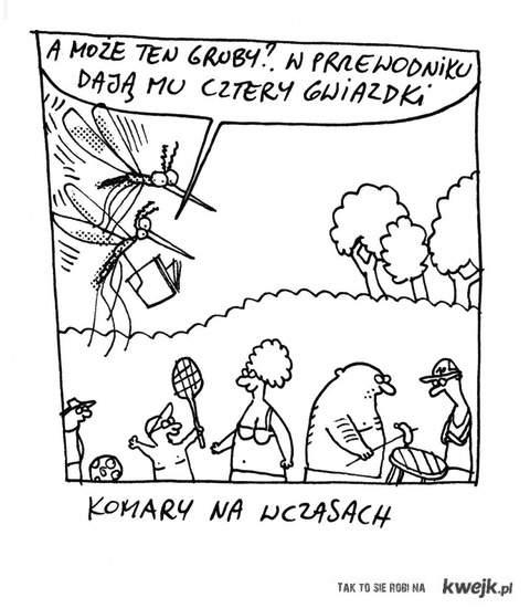 Komary oceniaja ludzi