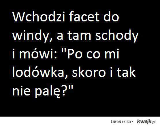Wchodzi facet do windy