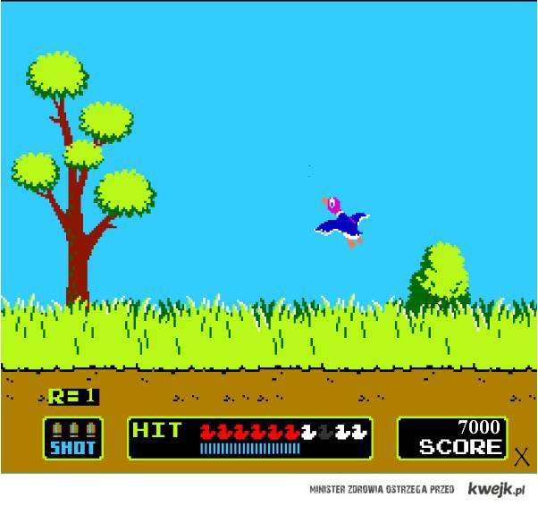kaczki-pegazus