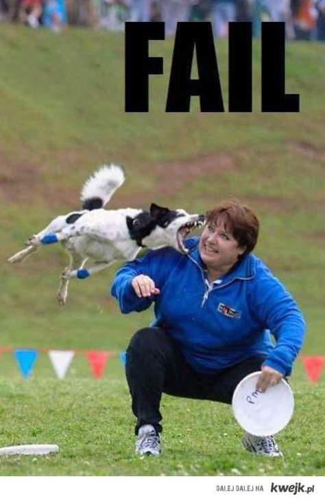 dog epic fail