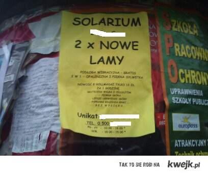 nowe lamy w solarium