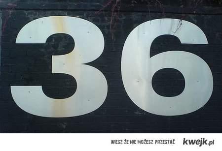 """36"" !"