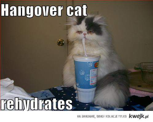 rehydrates