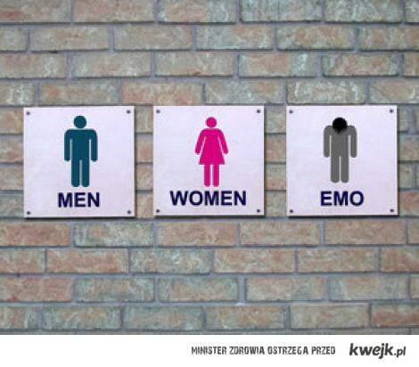 rodzaje toalet