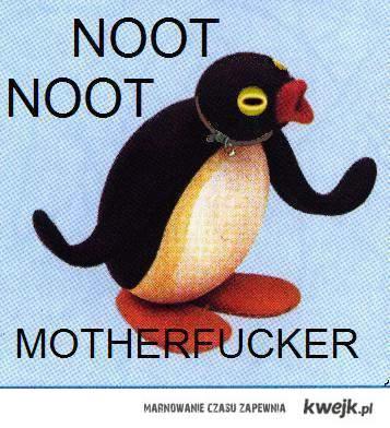 Pingwin pik pok noot motherfucker