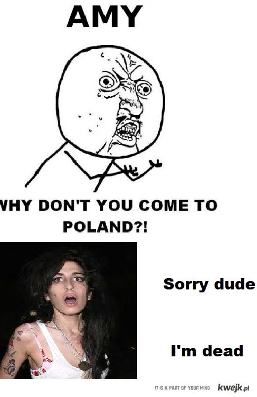 Amy do Polski