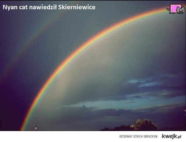 Nyan Cat - Skierniewice