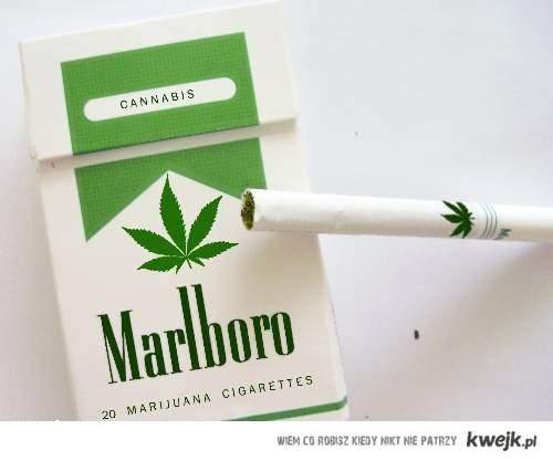 marlboro green