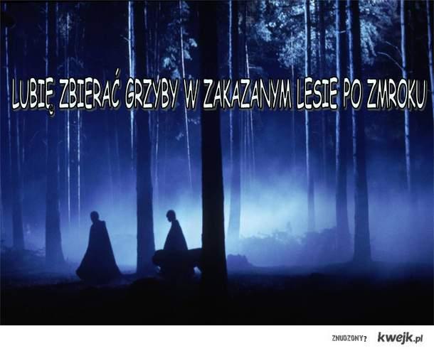 Zakazany las, Ja i Grzyby