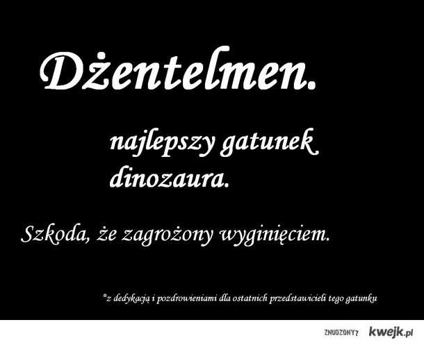 dinozaurr :D