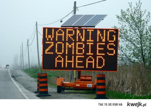 aaaaaaaa zombies!