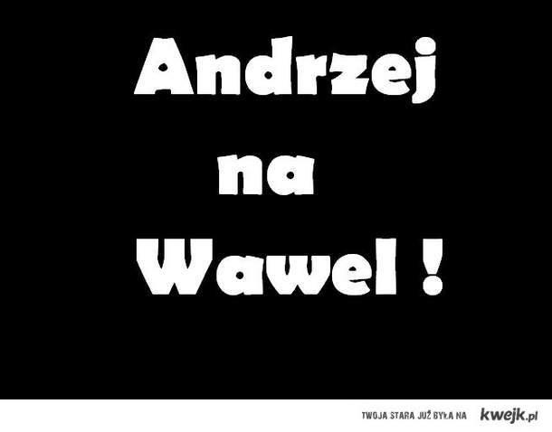 Andrzej na wawel