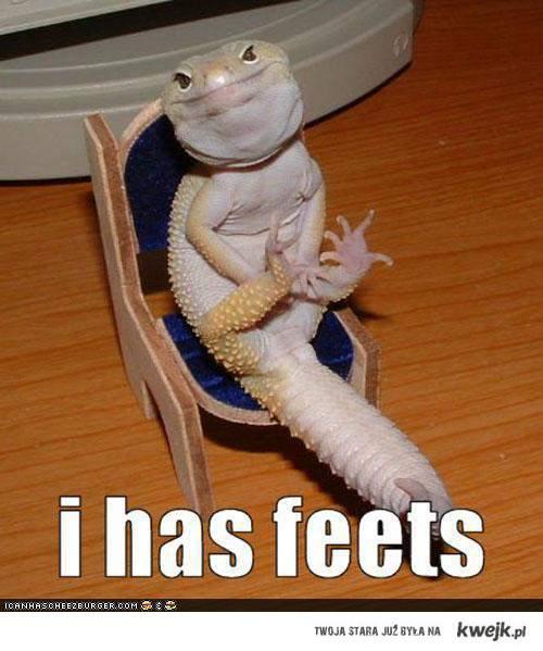I Has Feet