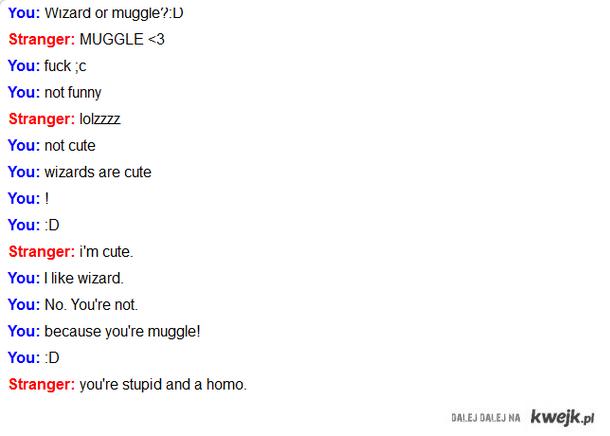 wizard or muggle?