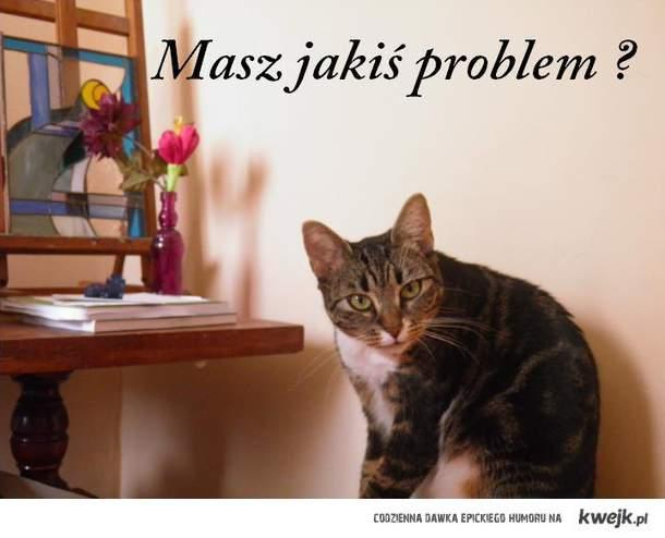 Masz jakiś problem ?