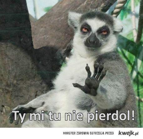 STOP PIERDOLING! :D