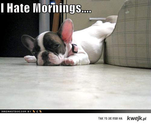 I hate mornings...