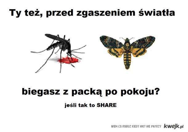 komary ;/