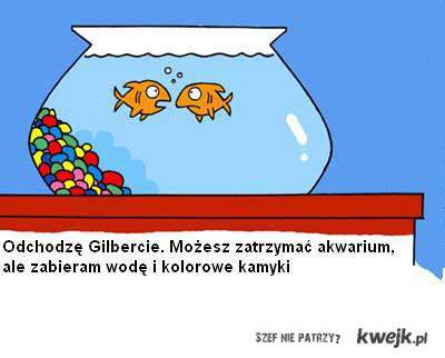 Rybki :)