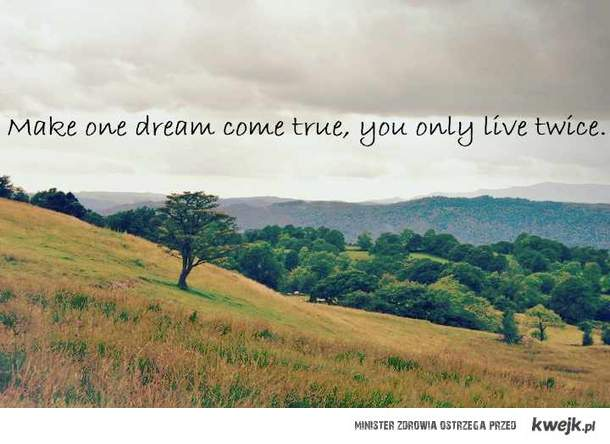 Make one dream come true, you only live twice.