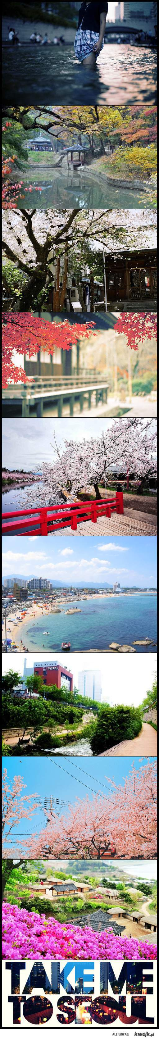 beautiful Korea