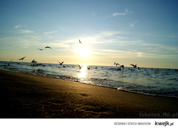 plaża <3