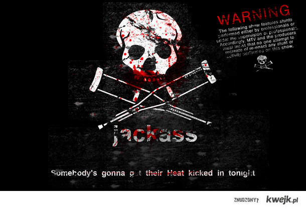 Jackass!!!