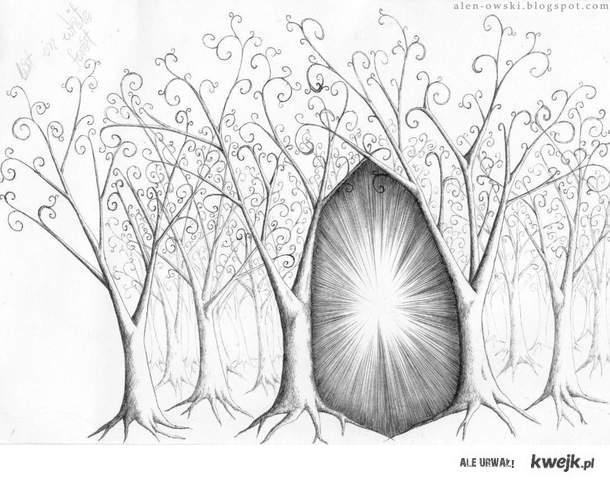 biały las