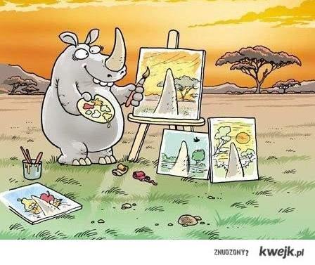 Obrazy nosorożca