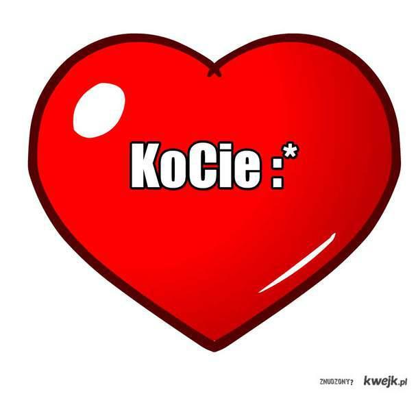 Kocieee