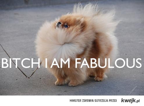 fabulous, ehe.