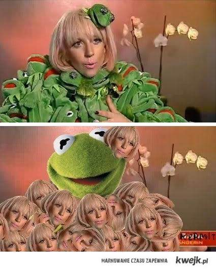 Gaga i Kermit