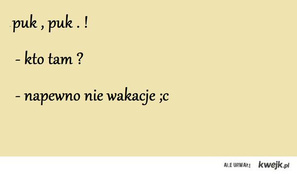 Puk puk ... ;c