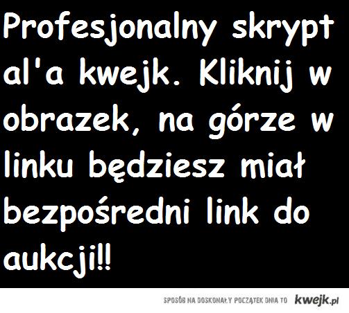 http://allegro.pl/profesjonalny-skrypt-kwejk-demoty-unikalny-design-i1798480802.html