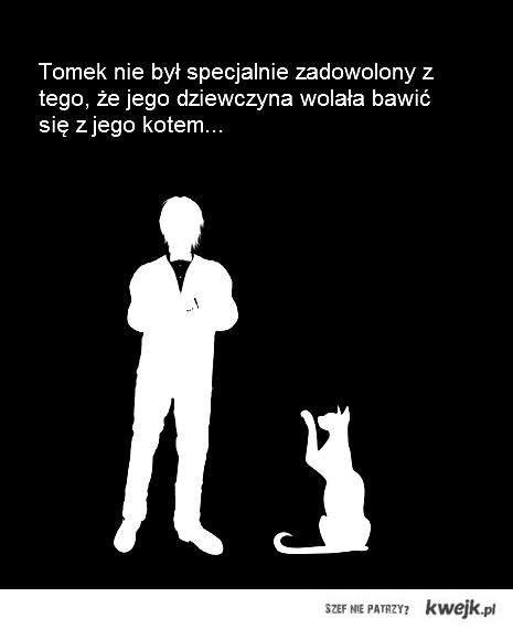 Kot jak zwykle