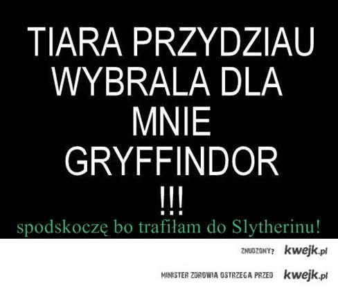 Slytherin górą!