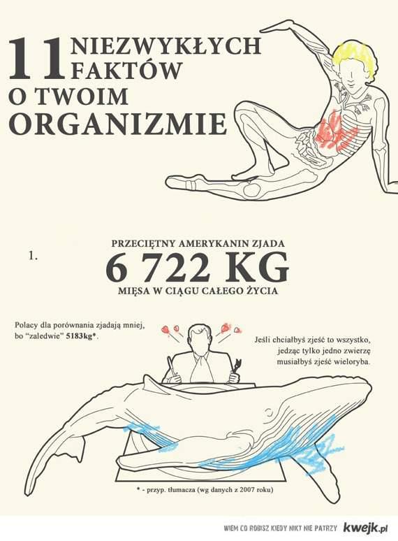 11 niezwykłych faktów