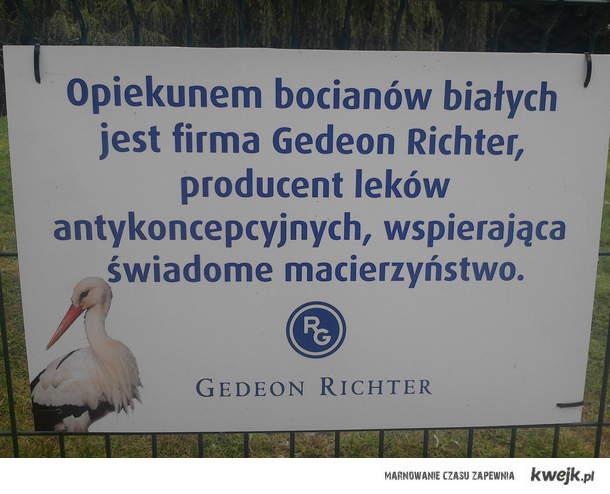 w Chorzowskim zoo