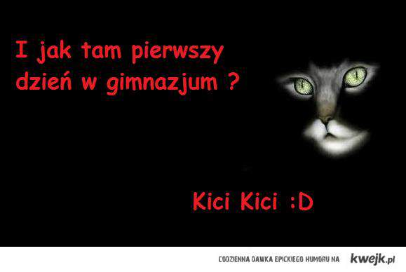 Kici Kici :D