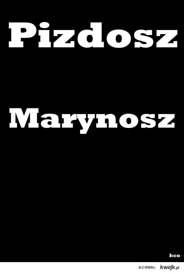 Marynosz