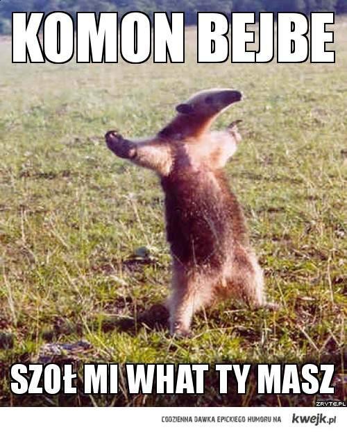 KOMON !