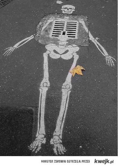 road skeleton.