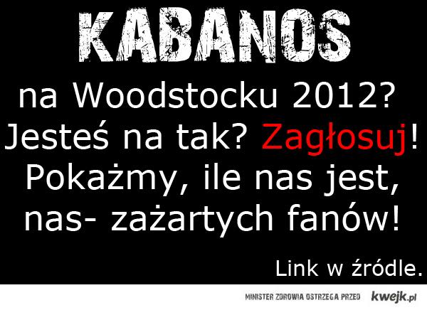 Kabanos na Woodstock 2012?
