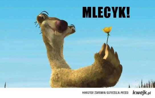 MELCYK!