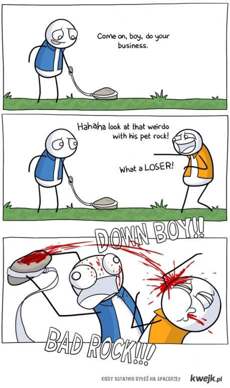 Kamień na spacerze