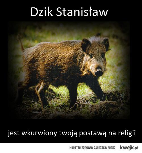 Dzik Stanisław
